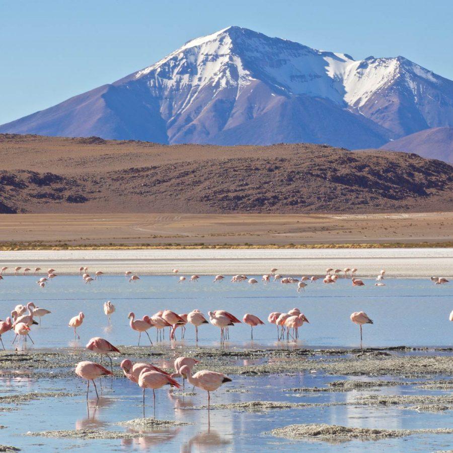 Laguna Verde in Bolivia