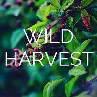 Wild Harvest Network